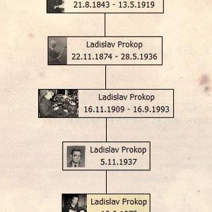family tree Proko violin