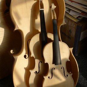 P1190949.jpg prokop violin